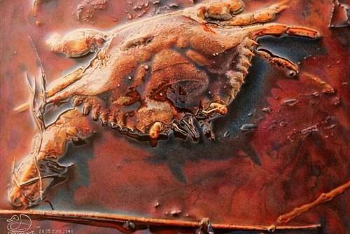 Krebs in Ölpest